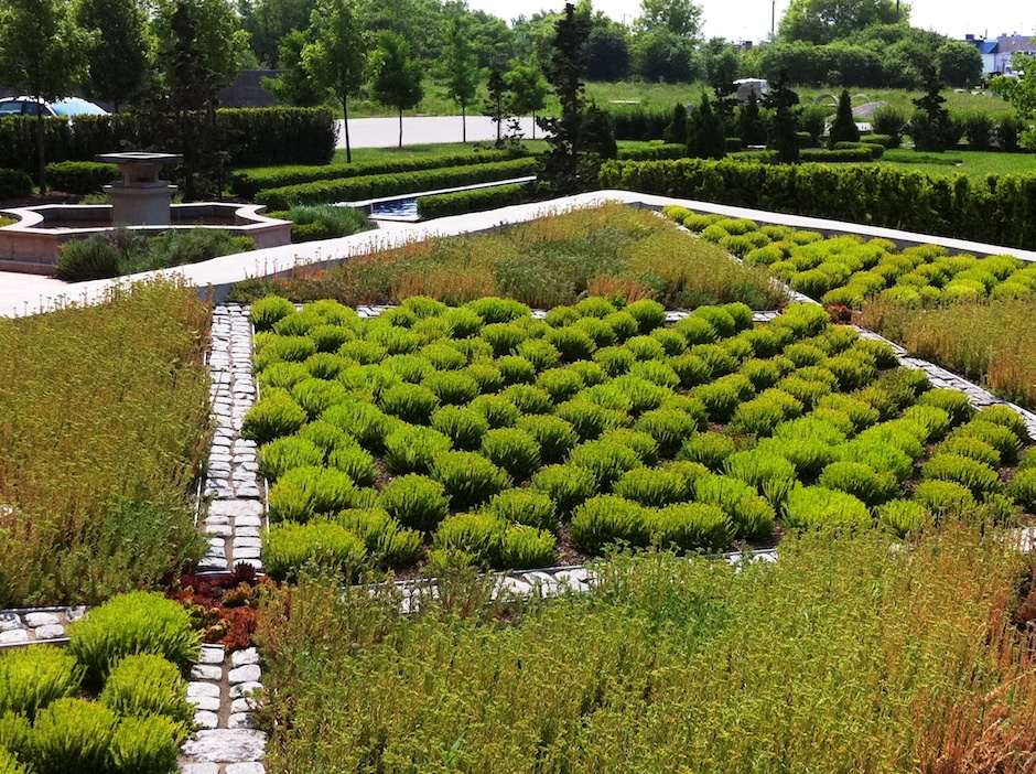 Hacienda Sarria Green Roof