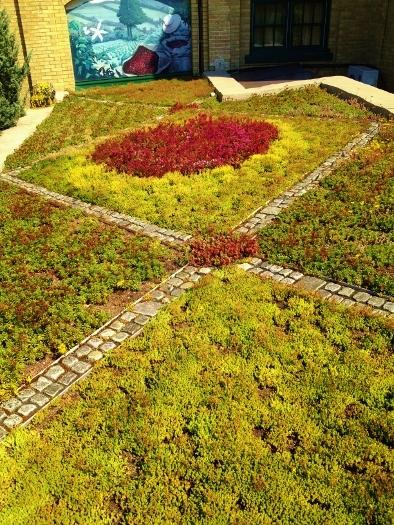 Hacienda Sarria Lower Roof
