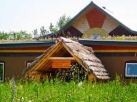 Camp Kawartha Green Roof